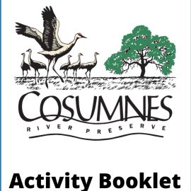 Kids Activity Booklet! Learn While You Hike