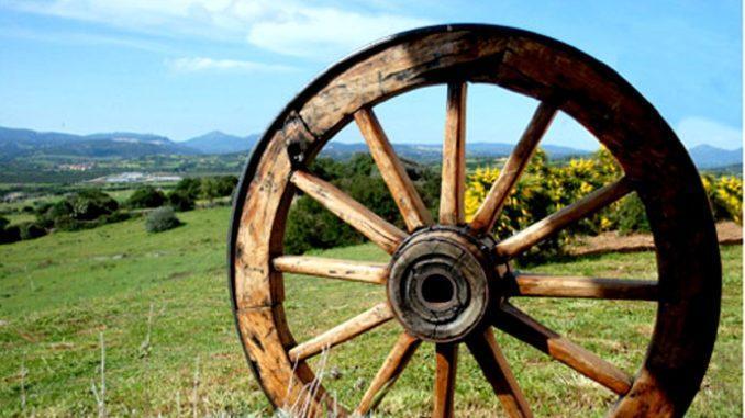 investimenti aziende agricole