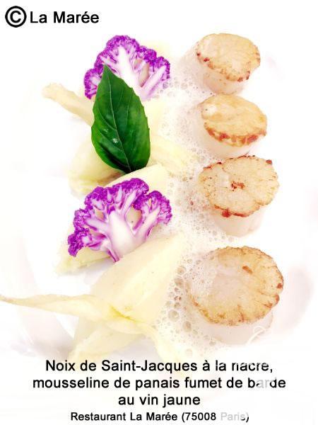Noix de Saint-Jacques à la nacre, mousseline de panais, fumet de barde au vin jaune