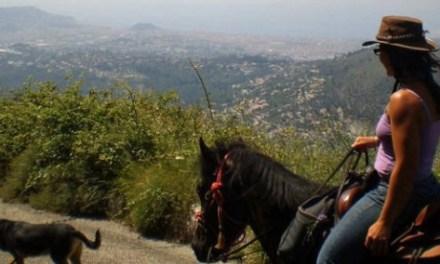 A cheval sur les hauteurs de Nice