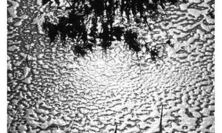 Exposition Lucien Clergue