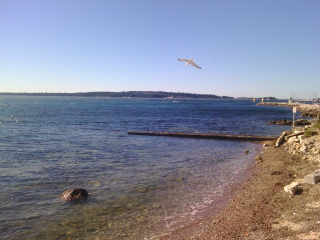 Photo de la semaine : Cap d'Antibes