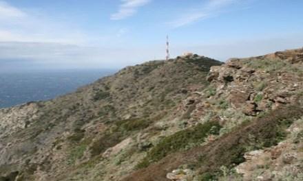 Massif du Cap Sicié