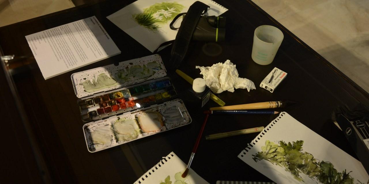 Rencontre avec l'illustrateur scientifique du Muséum