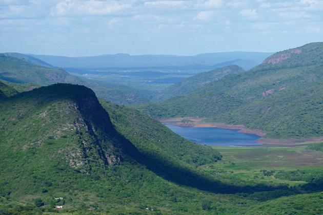 L'Afrique du Sud : le berceau de l'humanité