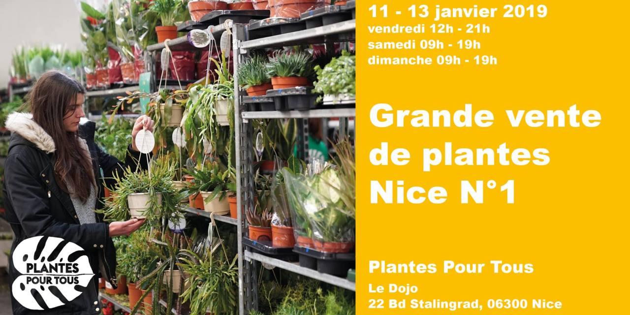 Plantes Pour Tous à Nice