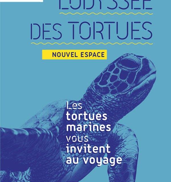 L'odyssée des Tortues au Musée Océanographique de Monaco