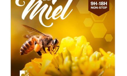 4ème Fête du Miel à Cogolin