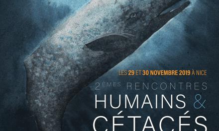 """2ème édition des rencontres """"Humains & Cétacés"""""""
