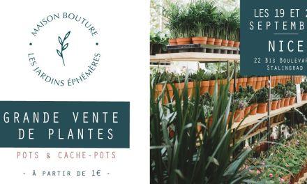Le Jardin Ephémère de Maison Bouture à Nice