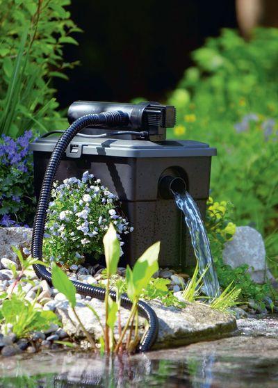 Faire un bassin dans un jardin  les bonnes ides  Ct Maison