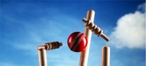 U15 Indoor Cricket Team