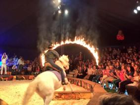 giffords-circus-painted-wagon-cotswolds-concierge (11)