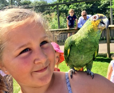 birdland-bourton-cotswolds-concierge (26)