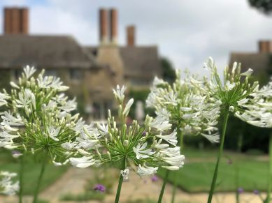 mallory-court-garden-cotswolds-concierge (12)