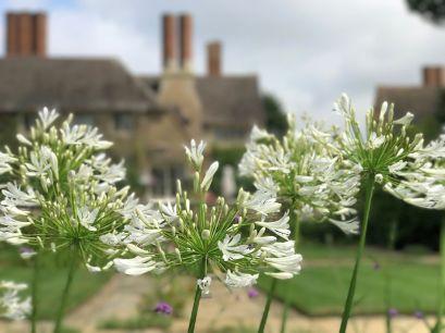 mallory-court-garden-cotswolds-concierge (12)