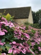 calcot-manor-family-friendly-hotel-cotswolds-concierge- (52)
