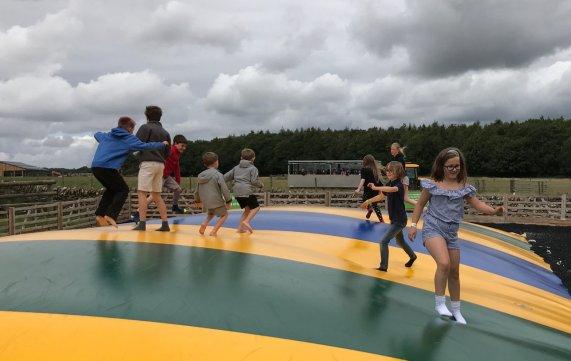 cotswold-farm-park-cotswolds-concierge-summer (24)