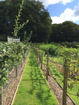 painswick-rococo-garden-summer-cotswolds-concierge (51)
