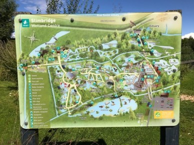 slimbridge-wetlands-centre-cotswolds-concierge (45)