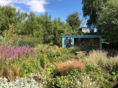 slimbridge-wetlands-centre-cotswolds-concierge (58)