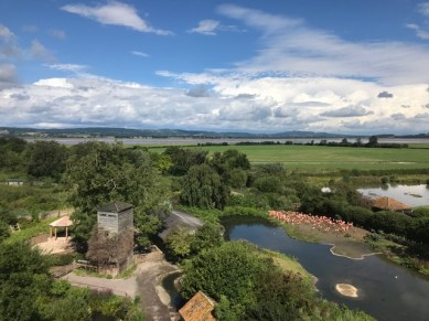 slimbridge-wetlands-centre-cotswolds-concierge (59)