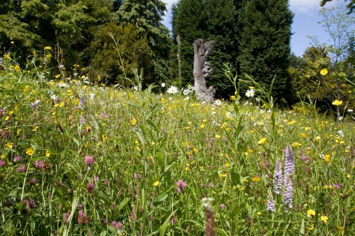 batsford-arboretum-cotswolds-concierge (6)