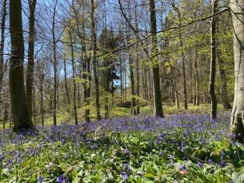 road-trip-northleach-bibury-yanworth-winchcombe-cotswolds-concierge-staycation (25)