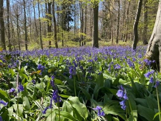 road-trip-northleach-bibury-yanworth-winchcombe-cotswolds-concierge-staycation (28)