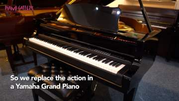 Grand Piano to Digital Conversion