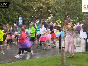 The Great Fairy and Pirate fun run 2014