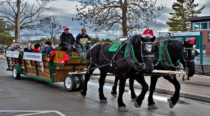Horse Drawn Wagon in Christmas Parade