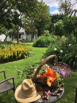 Summer abundance in the flower garden