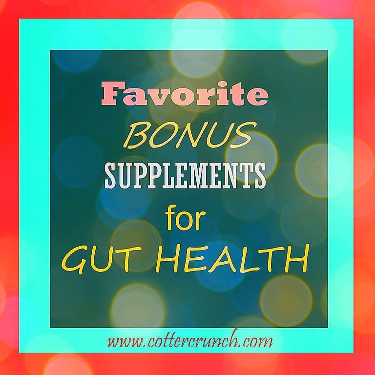 bonus-supplements-for-gut-health-2.jpg