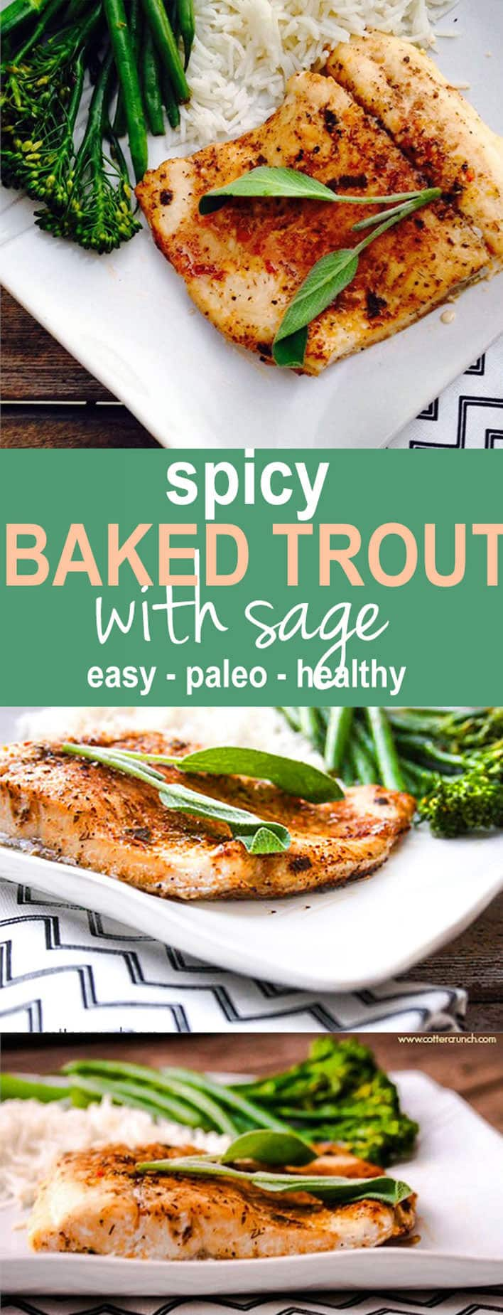 Spicy Baked Southwest Trout with Herbs! This baked trout is easy to make, paleo, and great use of herbs (like sage) and other spices! @cottercrunch
