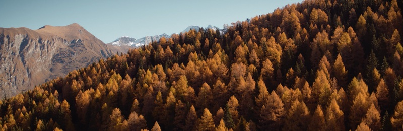Perpetual Change – Autumn in the Alps