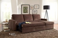 Sofa Hideaway Bed New Hideaway Bed Couch 69 For Living ...