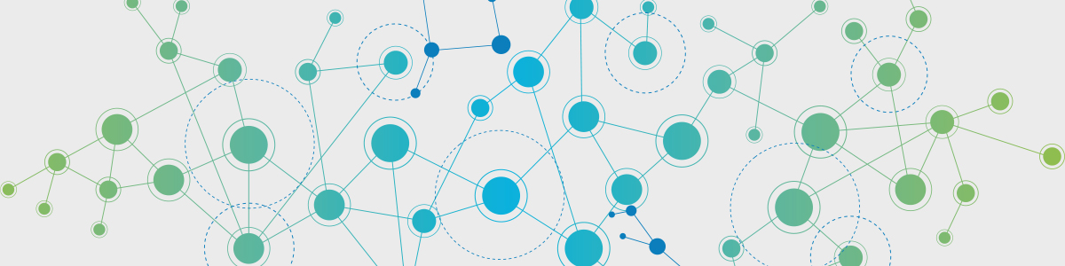 a network approach to