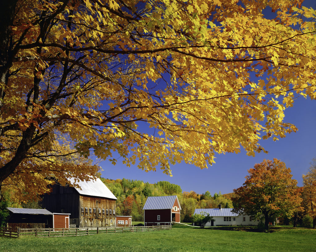 Vermont Fall Wallpaper Vermont Autumn Foliage Rural New England Countryside