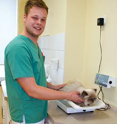 Tiermedizinischer Fachangestellter