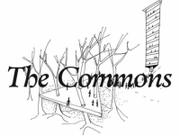 Beyond Development: The Commons As A New/Old Paradigm Of Human Flourishing