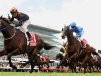 Having A Flutter: The Melbourne Cup And The Australian Gambler