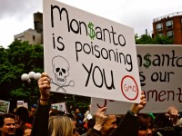 From Earth Day to The Monsanto Tribunal, Capitalism on Trial