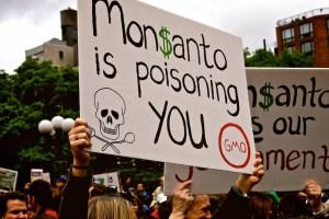 Codex  Alimentarius and Monsanto's Toxic Relations
