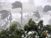 Disaster As Joy: Cyclone Debbie Strikes