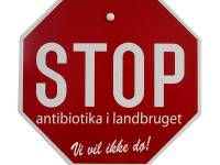 The Pig Industry And The Usage Of Antibiotics In Denmark