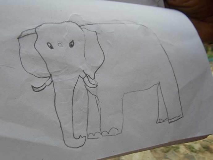Appu's Elephant