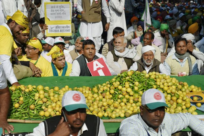 New Delhi: Farmers display fruits and vegetables at the Kisan Mukti Sansad, organised to highlight the farmers' issues, in New Delhi on Monday. PTI Photo by Atul Yadav  (PTI11_20_2017_000103B)