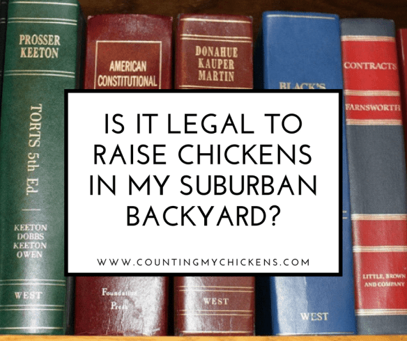 Is is legal to raise chickens in my suburban backyard?