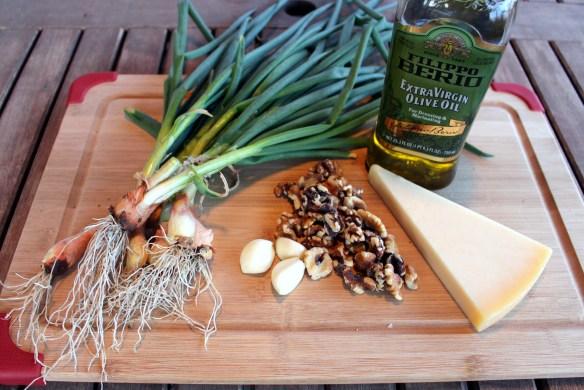 Ingredients for scallion pesto